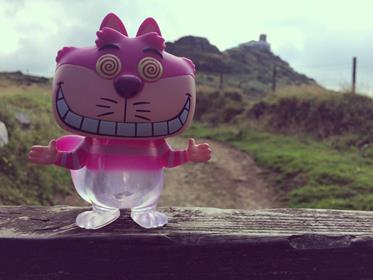 Funko Pop! Disney Cheshire Cat (Faded) AdamandPhotography on Instagram
