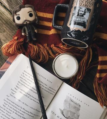 Funko Pop! Harry Potter Sirius Black clockworkbibliophile on tumblr.com