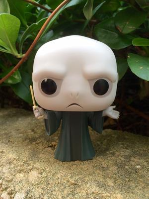 Funko Pop! Harry Potter Lord Voldemort emilywatto1810 on tumblr.com