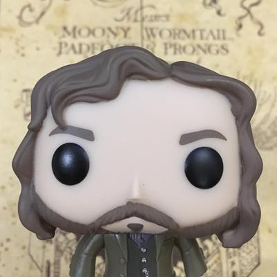 Funko Pop! Harry Potter Sirius Black hinkypunksandnargles on tumblr.com