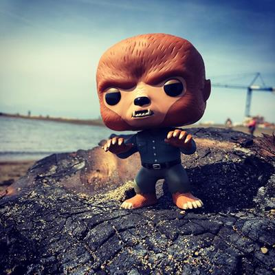 Funko Pop! Movies The Wolf Man myworldofpops on instagram.com