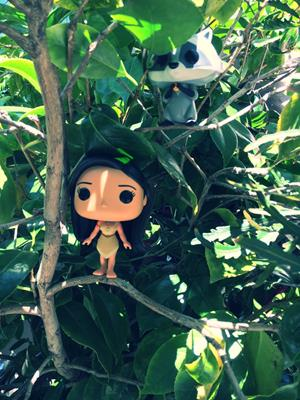 Funko Pop! Disney Pocahontas funko-pop-in-paradise on tumblr.com