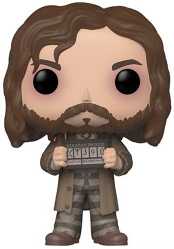Funko Pop! Harry Potter Sirius Black (Prisoner) Icon